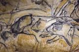 Les lions de la Grotte Chauvet - © Reuters media
