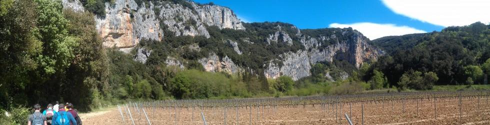 Caverne du Pont d\'Arc - pano CROP (2).jpg