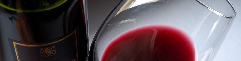 Vignoble et Découverte - PANO verre ©Mick Stephenson.jpg